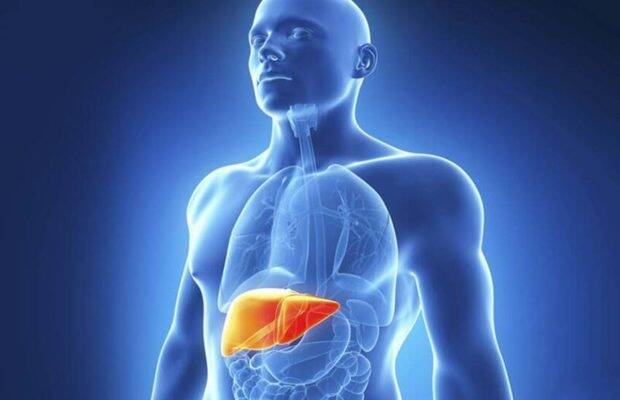 Liver Inflammation