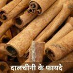 दालचीनी के फायदे | Benefits Of Cinnamon In Hindi