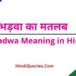 भड़वा का मतलब क्या होता है Bhadwa Meaning in Hindi