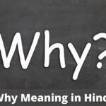 Why Meaning in Hindi | Why का मतलब हिन्दी में