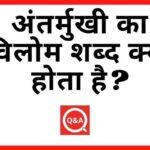 अंतर्मुखी का विलोम शब्द क्या होता है Antarmukhi Ka Vilom Shabd in Hindi