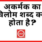 अकर्मक का विलोम शब्द क्या होता है Akarmak Ka Vilom Shabd in Hindi