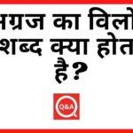 अग्रज का विलोम शब्द क्या होता है? | Agraj Ka Vilom Shabd in Hindi
