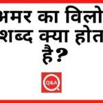 अमर का विलोम शब्द क्या होता है? | Amar Ka Vilom Shabd in Hindi