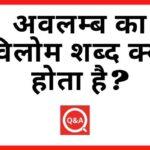अवलम्ब का विलोम शब्द क्या होता है? | Avalamb Ka Vilom Shabd in Hindi