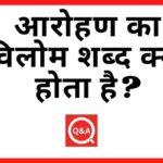 आरोहण का विलोम शब्द क्या होता है? | Aarohan Ka Vilom Shabd in Hindi