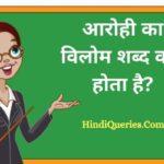 आरोही का विलोम शब्द क्या होता है? | Arohi Ka Vilom Shabd in Hindi
