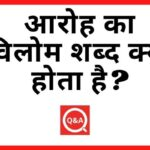 आरोह का विलोम शब्द क्या होता है? | Aaroh Ka Vilom Shabd in Hindi
