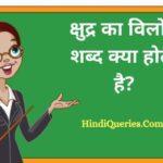 क्षुद्र का विलोम शब्द क्या होता है? | Kshudra Ka Vilom Shabd in Hindi