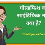 गोल्डफिश का साइंटिफिक नाम क्या है? | Goldfish Ka Scientific Naam Kya Hai