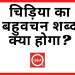 चिड़िया का बहुवचन शब्द क्या होगा Chidiya Ka Bahuvachan