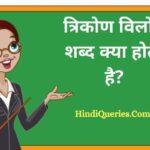 त्रिकोण विलोम शब्द क्या होता है? | Trikon Ka Vilom Shabd in Hindi
