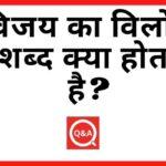 विजय का विलोम शब्द क्या होता है Vijay Ka Vilom Shabd in Hindi