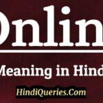 Online Meaning in Hindi   ऑनलाइन मीनिंग इन हिंदी