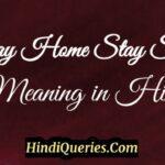 Stay Home Stay Safe Meaning in Hindi स्टे होम स्टे सेफ मीनिंग इन हिंदी