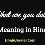 What Are You Doing in Hindi Meaning व्हाट आर यू डूइंग का मतलब हिंदी में