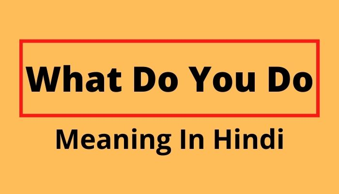 What Do You Do Meaning In Hindi
