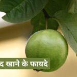 अमरूद खाने के फायदे | Amrud Khane Ke Fayde