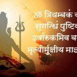 महामृत्युंजय मंत्र हिंदी में (Mahamrityunjay Mantra in Hindi)