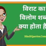 विराट का विलोम शब्द क्या होता है?   Virat Ka Vilom Shabd in Hindi