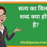 सत्य का विलोम शब्द क्या होता है? | Satya Ka Vilom Shabd in Hindi