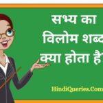 सभ्य का विलोम शब्द क्या होता है? | Sabhy Ka Vilom Shabd in Hindi