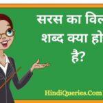 सरस का विलोम शब्द क्या होता है?   Saras Ka Vilom Shabd in Hindi