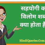 सहयोगी का विलोम शब्द क्या होता है? | Sahyogi Ka Vilom Shabd in Hindi