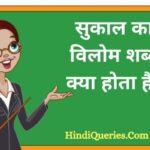 सुकाल का विलोम शब्द क्या होता है? | Sukal Ka Vilom Shabd in Hindi