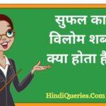 सुफल का विलोम शब्द क्या होता है? | Sufal Ka Vilom Shabd in Hindi