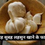 सुबह सुबह लहसुन खाने के फायदे   Benefits Of Garlic In Hindi