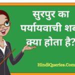 सुरपुर का पर्यायवाची शब्द क्या होता है? | Surpur Ka Paryayvachi Shabd in Hindi