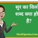 सुर का विलोम शब्द क्या होता है? | Sur Ka Vilom Shabd in Hindi