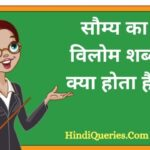 सौम्य का विलोम शब्द क्या होता है? | Saumy Ka Vilom Shabd in Hindi