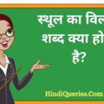 स्थूल का विलोम शब्द क्या होता है? | Sthool Ka Vilom Shabd in Hindi