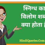 स्निग्ध का विलोम शब्द क्या होता है? | Snigdh Ka Vilom Shabd in Hindi