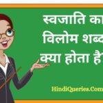 स्वजाति का विलोम शब्द क्या होता है? | Swajati Ka Vilom Shabd in Hindi