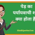 पेड़ का पर्यायवाची शब्द क्या होता है Ped Ka Paryayvachi Shabd in Hindi