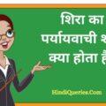 शिरा का पर्यायवाची शब्द क्या होता है? | Shira Ka Paryayvachi Shabd in Hindi