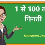 1 से 100 तक गिनती   1 To 100 Numbers in Hindi English
