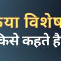 Kriya Visheshan Kise Kahate Hain: क्रिया विशेषण किसे कहते हैं?