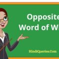 Opposite Word of With | With Antonyms Word