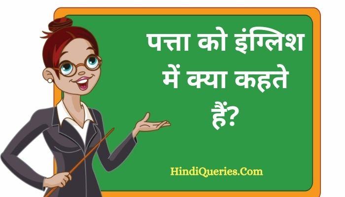 पत्ता को इंग्लिश में क्या कहते हैं? | Patte ko english mein kya kahate hain